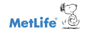 MetLife Partners